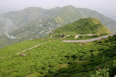 Dovolenka  - India - Západní Bengálsko - Putování po Himalájích
