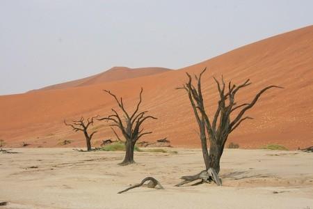 Dovolenka  - Namíbia - Velký okruh Namibií