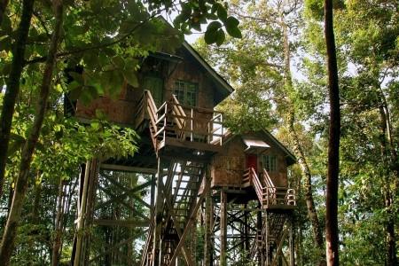 Dovolenka  - Malajzia - Permai Rainforest Resort