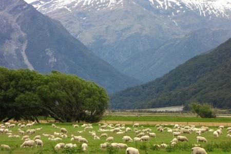 Dovolenka  - Nový Zéland - Karavanem po jižním ostrově Nového Zélandu