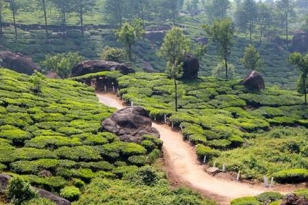 Dovolenka  - India - Cesta z Indie do Nepálu