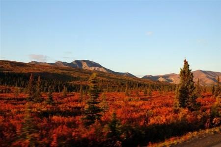 Dovolenka  - Kanada - Severské Safari - Aljaškou a Yukonem v jeepech