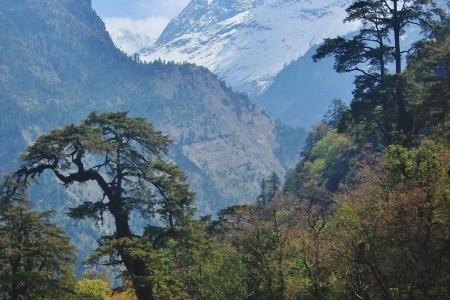 Zájezd Nepál - Kanchenjunga, Trek Do Nepoznané Oblasti