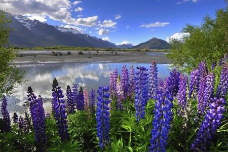 Dovolenka  - Nový Zéland - Nový Zéland - Přírodní krásy země Maorů