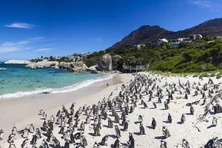 Dovolenka  - Juhoafrická republika - JAR - Svazijsko - Pestrost duhového národa a safari
