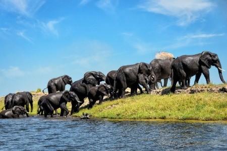 Dovolenka  - Juhoafrická republika - Zimbabwe - Botswana - Namibie - JAR - Vodopády a safari