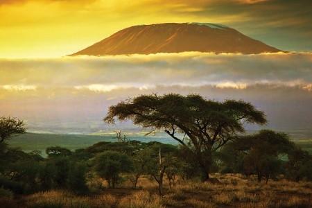 Dovolenka  - Tanzánia - Kilimandžáro cestou Marangu_2018