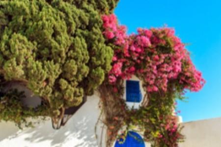 Najobľúbenejšie tuniské letoviská