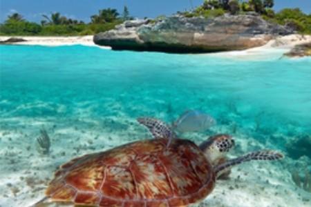 Objavte nové exotické destinácie: Horúce tipy na superhorúcu dovolenku