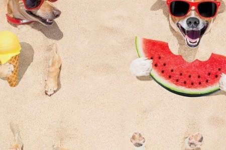 Invia odporúča: Obľúbené letné destinácie 2020