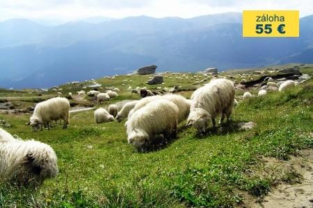 Dovolenka  - Rumunsko - Za perlami Transylvánie, území knížete Drákuly