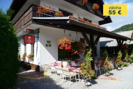 Dovolenka  - Slovinsko - Penzion Vila Bistrica