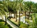 krásna palmová záhrada v hoteli Marhaba