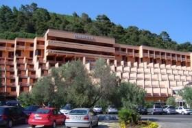 Hotel Hedera/mimosa