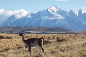 Chile - Bolívie - Argentina