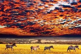 Velká cesta východní Afrikou