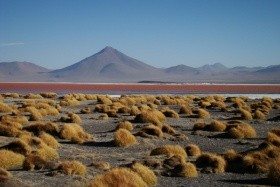 To nejlepší z Bolívie
