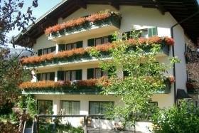 Haflingerhof - Golling