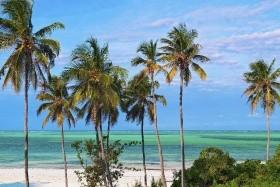 Keňa - Tanzanie - Zanzibar - Uganda - Bez výstupu na Mt. Keňu
