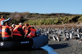 Fjords Of Tierra Del Fuego Na Lodi Stella Australis