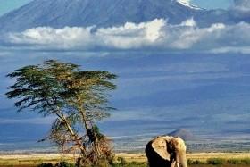 Hory, divočina i bílé pláže zájezd s výstupem na Kilimandžáro, safari i Zanzibar