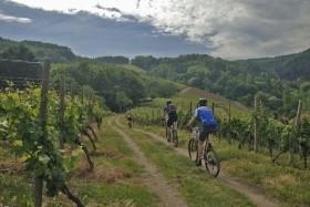Podhůří Kavkazu a víno z Kachetie, cyklistický zájezd Gruzie