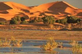 Poznávací zájezd Maroko :: Velký okruh Marokem