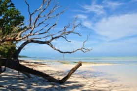 Ostrov Tchaj-Wan, Souostroví Karolíny A Mariany
