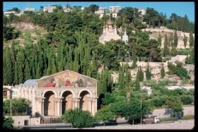 Izrael a Petra De Luxe - poznávací zájazd