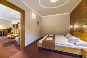 Trenčianské Teplice - Hotel Flóra