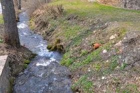 Chalupa Olešnice V Orlických Horách 3860