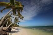 divoká pláž za hotelem
