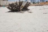 Pláž u hotelu Carlton plná odpadků.