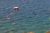 pláž Brioni