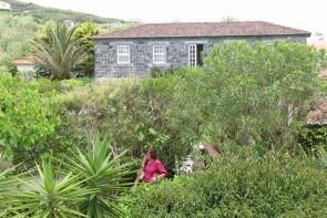 Quinta Das Buganvilias