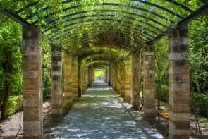 Národné záhrady