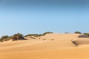 Národný park Souss-Massa