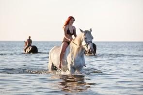 Jazda na koňoch na ranči Half Moon