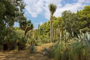 Botanická zahrada na Lokrume