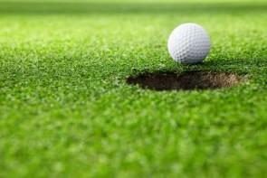 Golf Citrus