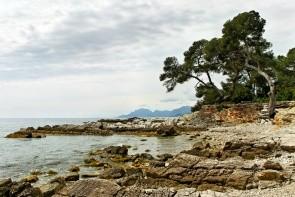 Ostrov Sainte-Marguerite