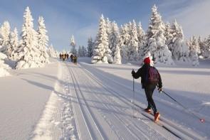 Lyžovanie na bežkách v údolí Alpbachtal
