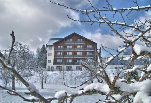 Hohenrodt (Loßburg)