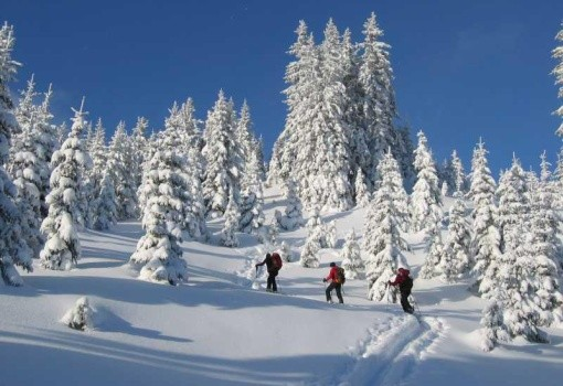 Erzberg Alpin Rresort