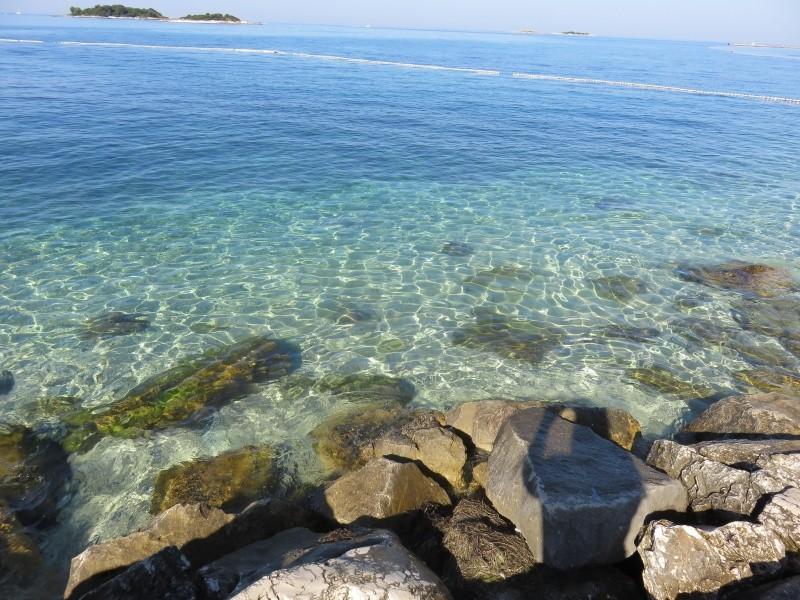 Hotel Delfin Chorvatsko Porec 155 Eur Invia