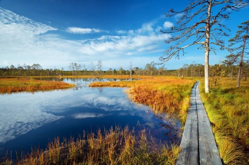 NP Lahemaa, Estónsko