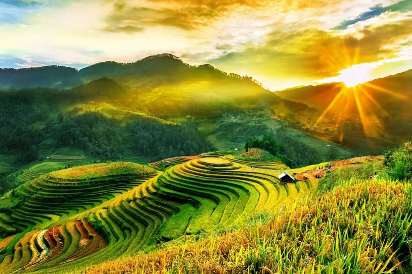 Ryžové terasy v Mu Cang Chai