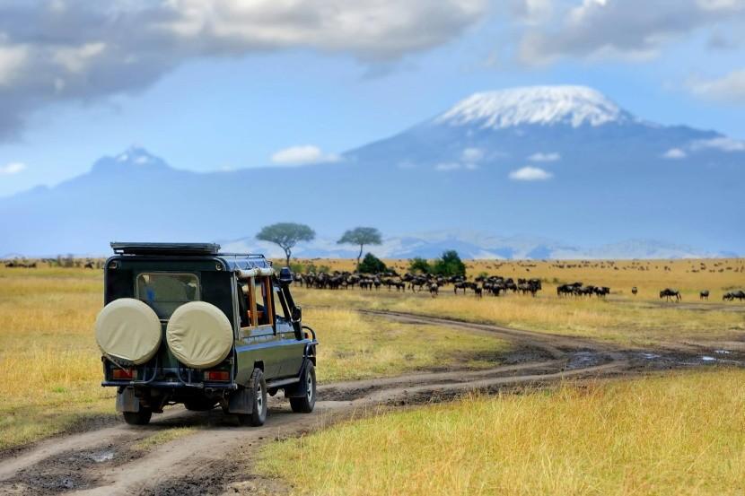 Safari Masai Mara