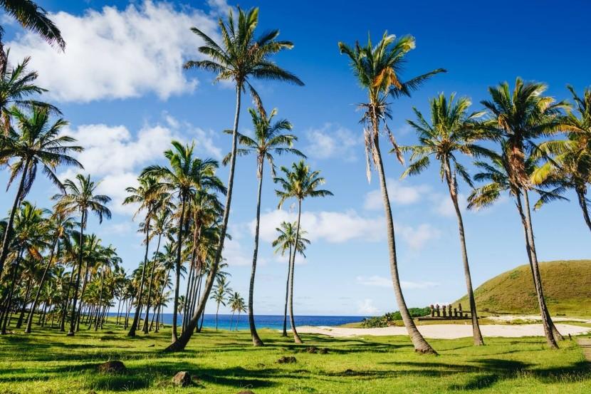 Pláž Anakena, Veľkonočný ostrov