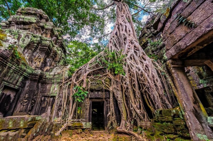 Ta Prohm, Kambodža